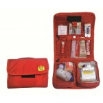 Family First Aid Kit Organizer